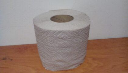 Професионална тоалетна хартия-рециклирана/ Toilet paper-recycled